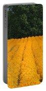 Oregon Orange Field Portable Battery Charger