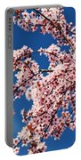 Oregon, United States Of America Cherry Portable Battery Charger