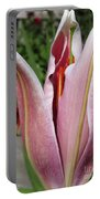 Oriental Lily Named La Mancha Portable Battery Charger