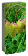 Ornamental Grasses Portable Battery Charger