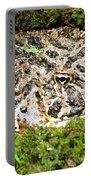 Ornate Horned Frog Portable Battery Charger