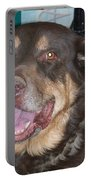 Oso Perro  Portable Battery Charger