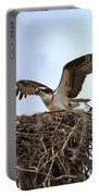 Osprey Portable Battery Charger