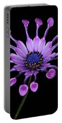 Osteospermum Portable Battery Charger