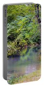 Overcast Reflections At Buck Creek Portable Battery Charger