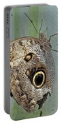 Owl Butterfly Portable Battery Charger