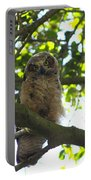 Owl In Central Park Portable Battery Charger