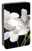 Oxalis Flowers 2 Portable Battery Charger