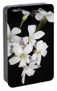Oxalis Flowers 3 Portable Battery Charger
