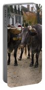 Oxen And Handler Portable Battery Charger