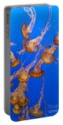 Pack Of Jelly Fish Portable Battery Charger