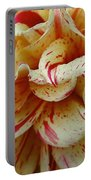 Paint Spattered Petals Portable Battery Charger
