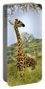 Painted Giraffe Portable Battery Charger