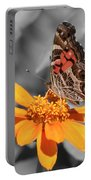 Painted Lady Butterfly On Zinnia Portable Battery Charger