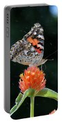 Painted Lady In A Shower Portable Battery Charger