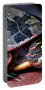 Painted Turtle Michigan Portable Battery Charger