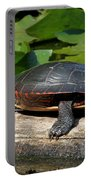 Painted Turtle On Log Portable Battery Charger