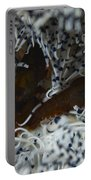 Pair Of Brown Snapping Shrimps Portable Battery Charger