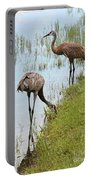 Pair Of Sandhills At The Marsh Portable Battery Charger