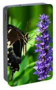 Palamedes Swallowtail Butterfly Portable Battery Charger