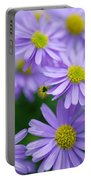 Pastel Purple Aster Portable Battery Charger