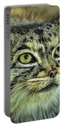 Pallas Cat Portable Battery Charger