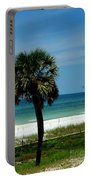 Palmetto And The Beach Portable Battery Charger