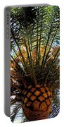 Palms Portable Battery Charger