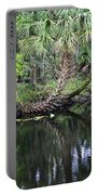 Palms On The River Portable Battery Charger