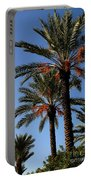 Palms9895b Portable Battery Charger