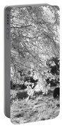 Palo Verde Blossoms Portable Battery Charger