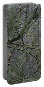 Palo Verde In The Rain Portable Battery Charger