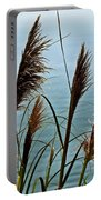 Pampas Grass Of Big Sur Portable Battery Charger