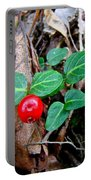 Partridge Berry Berry - Mitchella Repens Portable Battery Charger