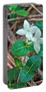 Partridge Berry Flower - Mitchella Repens Portable Battery Charger
