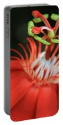 Passiflora Vitifolia - Scarlet Red Passion Flower Portable Battery Charger