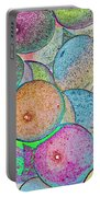 Pastal Art Portable Battery Charger