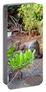 Path To The Waterfall Portable Battery Charger