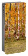Patriotic Autumn Portable Battery Charger