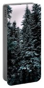 Pat's Winter Trees 1d Portable Battery Charger