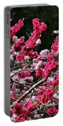 Peach Blossom Portable Battery Charger by Kaye Menner