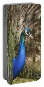 Peacock Display Portable Battery Charger by Richard Garvey-Williams
