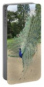 Peacock Glory Portable Battery Charger