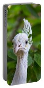 Peacocks Portable Battery Charger