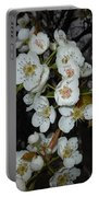 Pear Blooms And Tree Portable Battery Charger