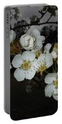 Pear Blooms Portable Battery Charger