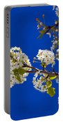 Pear Spring Portable Battery Charger by Chad Dutson