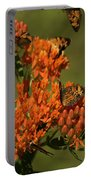 Pearly Crescentpot Butterflies Landing On Butterfly Milkweed Portable Battery Charger