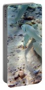 Pebbles And Fins Portable Battery Charger
