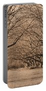 Pecan Orchard Portable Battery Charger
